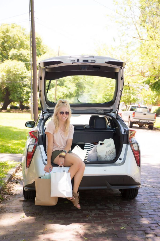 Adventure in a Toyota Prius