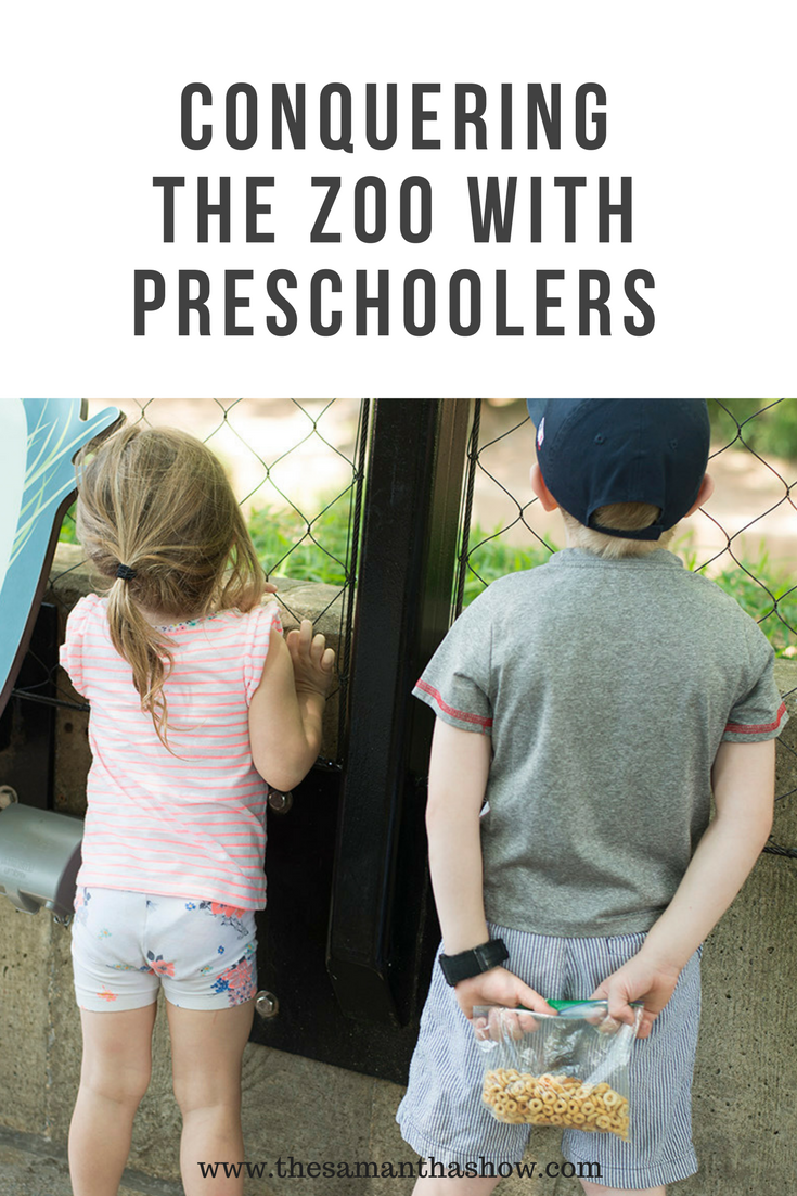 Kids and the zoo can be a real trip. No pun intended! Here are some ways to make sure you're conquering the zoo with preschoolers and enjoying it!