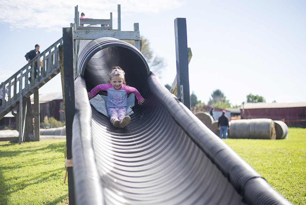 Check off a fall fest on your Family Fall Bucket List