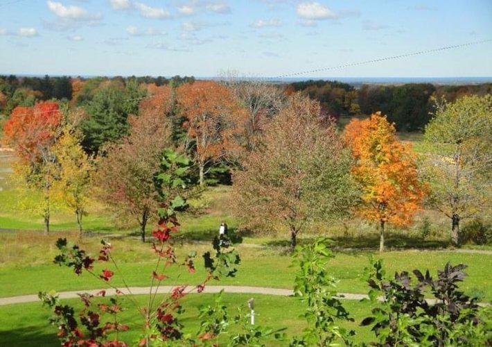 Best fall activities in Cleveland